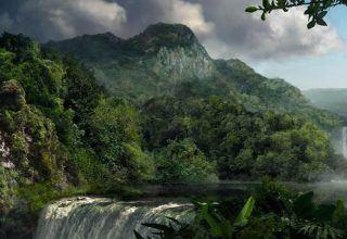 Ormanların Muhteşem Sessizliği