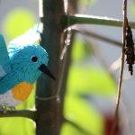 Kuşların Doğa İle İmtihanını Bu Fotoğraflarla Hissedin !